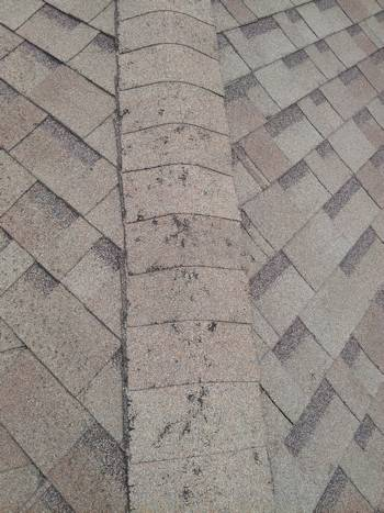 Fort Collins Roof Damage - Denver Roofing